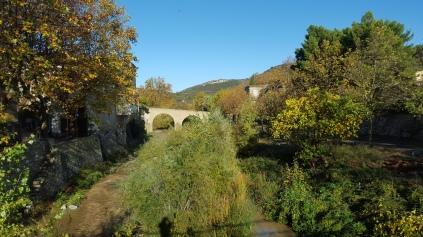 La rivière charie beaucoup de limon qui avec l'eau, alimente la croissance trop rapide de la végétation.