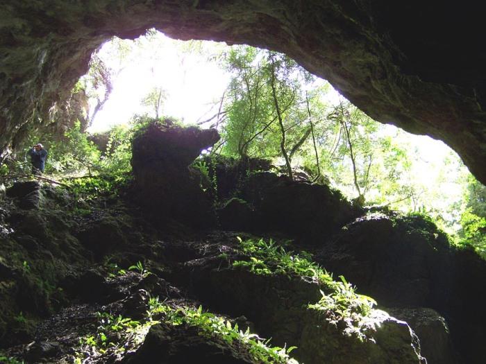 La Caune du Causse