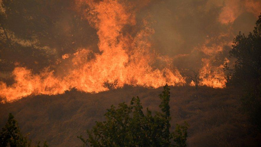 2021-07-25-Incendie-Moux